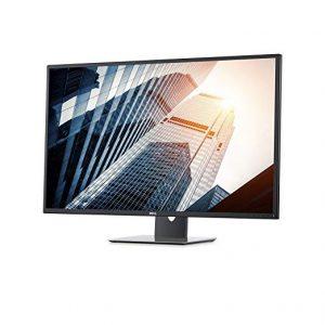 Dell P4317Q 43-inch Ultra HD 4K Multi Client Monitor